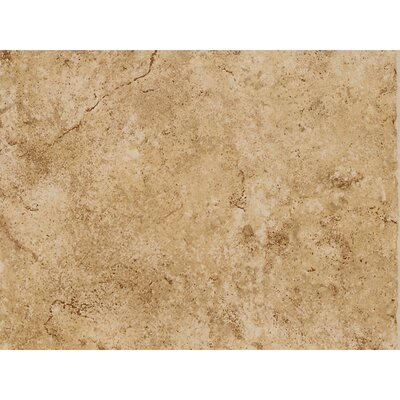 Fidenza 9 x 12 Porcelain Field Tile in Dorado