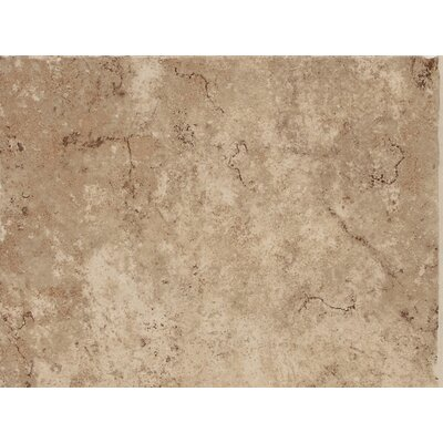 Fidenza 9 x 12 Porcelain Field Tile in Caf�