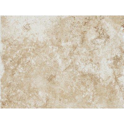 Fidenza 9 x 12 Porcelain Field Tile in Bianco