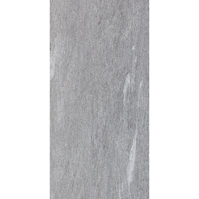Ambassador Light Polished 12 x 24 Porcelain Wood Look/Field Tile in Global Gray