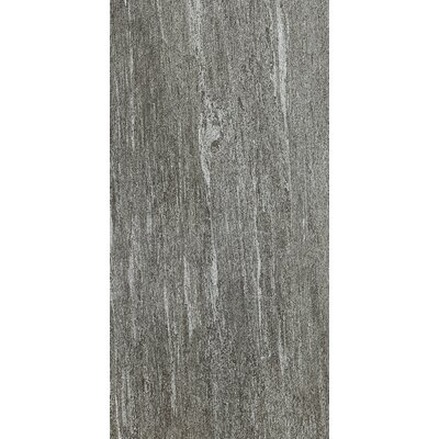 Ambassador 12 x 24 Porcelain Wood Look/Field Tile in Voyager Black