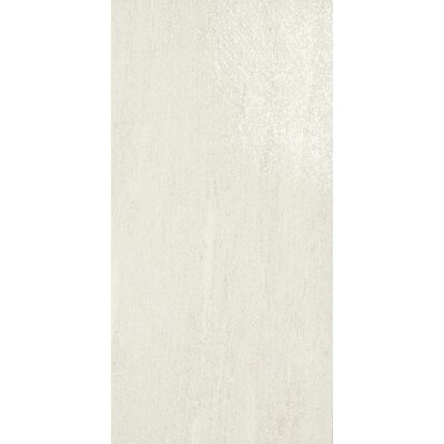 Ambassador Light Polished 12 x 24 Porcelain Wood Look/Field Tile in Wonderlust White