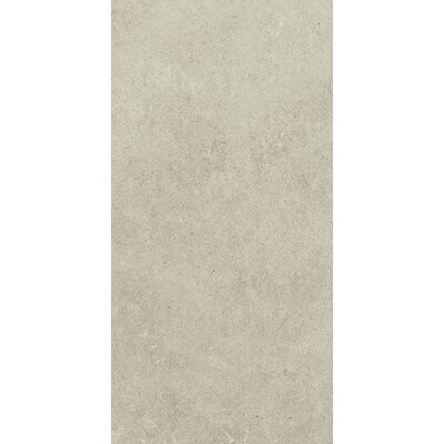 Haut Monde 12 x 24 Porcelain Field�Tile in Leisure Beige
