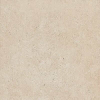Haut Monde 24 x 24 Porcelain Field�Tile in Aristocrat Cream
