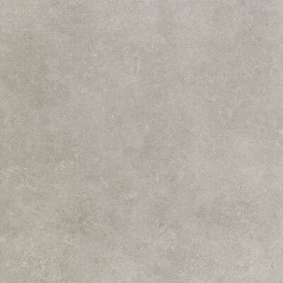 Haut Monde 24 x 24 Porcelain Field�Tile in Elite Gray