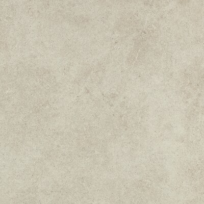 Haut Monde 24 x 24 Porcelain Field Tile in Leisure Beige