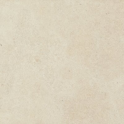 Haut Monde 24 x 24 Porcelain Field Tile in Nobility White