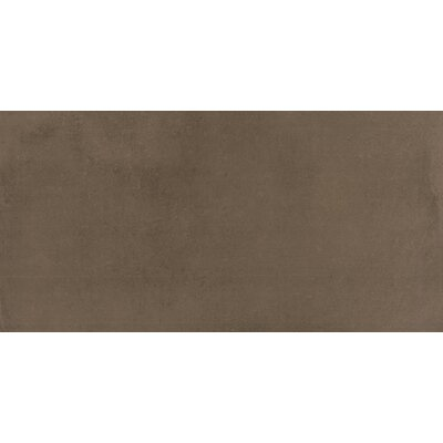 Portfolio 12 x 24�Porcelain Field Tile in Fango