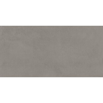 Portfolio 12 x 24�Porcelain Field Tile in Ash Gray
