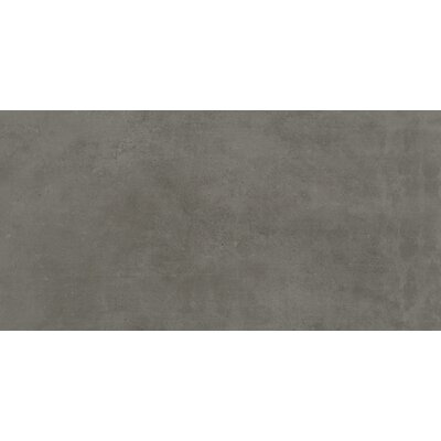 Portfolio 12 x 24�Porcelain Field Tile�in Iron Gray