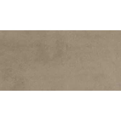 Fairfield 12 x 24 Porcelain Field Tile in Noce