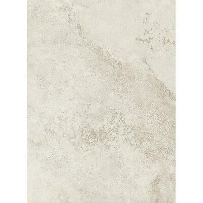 Salerno 10 x 14 Porcelain Field Tile in Grigio Perla