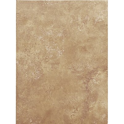 Salerno 10 x 14 Porcelain Field Tile in Marrone Chiaro