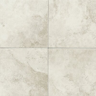 Salerno 18 x 18 Porcelain Field Tile in Grigio Perla