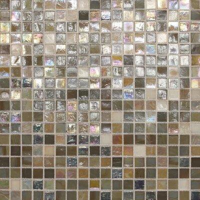 City Lights 0.5 x 0.5 Glass Mosaic Tile in Barcelona