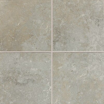 Huston 6 x 6 Ceramic Field Tile in Castillian Gray