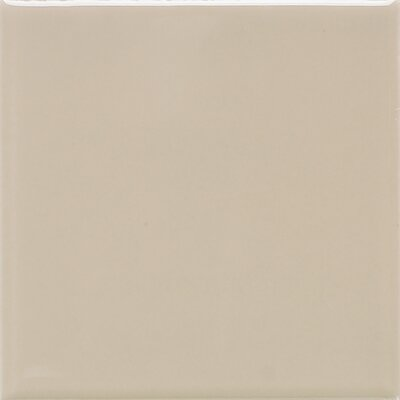 Modern Dimensions 4.25 x 12.75 Ceramic Field Tile in Urban Putty
