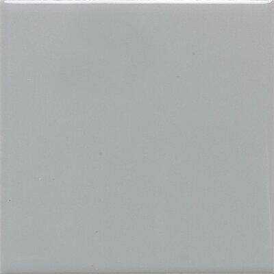 Modern Dimensions 4.25 x 12.75 Ceramic Field Tile in Desert Gray
