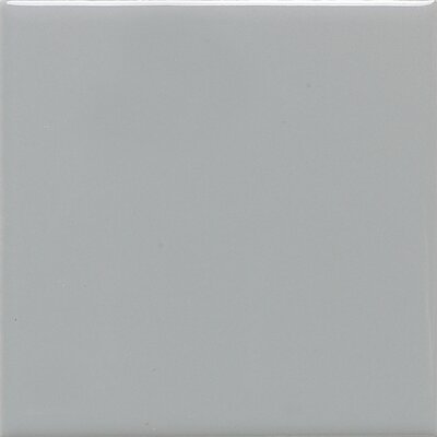 Rittenhouse Square 3 x 6 Subway Tile in Suede Gray