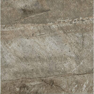 Ramires 13 x 13 Field Tile in Soft Taupe