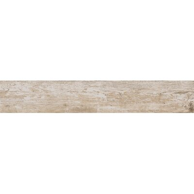 Season Wood 8 x 48 Field Tile in Winter Spruce