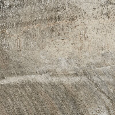 Ramires 20 x 20 Field Tile in Soft Taupe