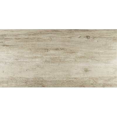 Season Wood Porcelain Field Tile in Winter Spruce