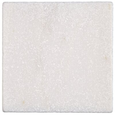 Harrison 4 x 4 Natural Stone Field Tile in First Snow