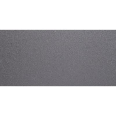 Aledo 12 x 24 Textured Porcelain Field Tile in Dark Gray