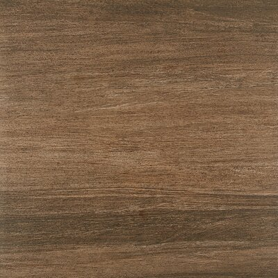 Marin 24 x 24 Porcelain Wood Look/Field Tile in Brown