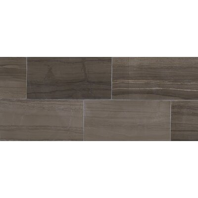 Harrison 6 x 3 Lightly Polished Natural Stone Field Tile in Silver Screen
