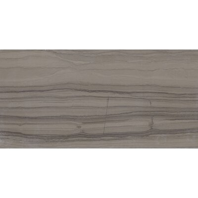 Harrison 6 x 3 Unpolished Polished Natural Stone Field Tile in Silver Screen