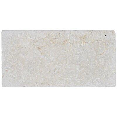 Harrison 6 x 3 Natural Stone Field Tile in Crema Marfil Classico