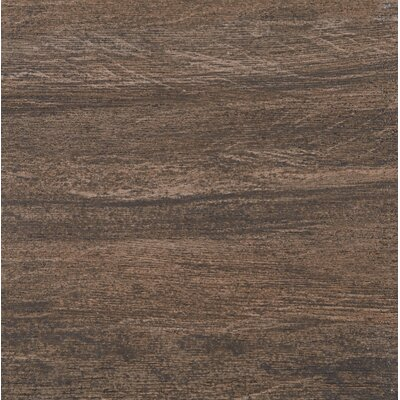 Marin 12 x 12 Porcelain Wood Look/Field Tile in Brown