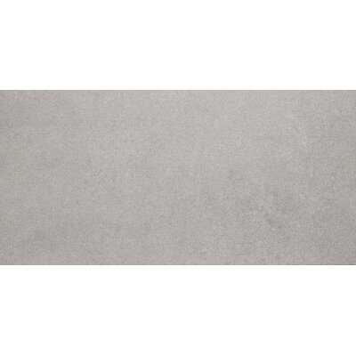 Freeport 12 x 24 Field Tile in Gray