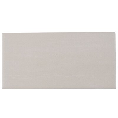 Clearview 4 x 8 Field Tile in Off White
