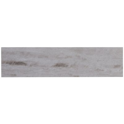 Mansfield Polished 6 x 24 Porcelain Field Tile in Silver Springs