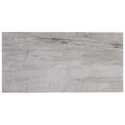 Mansfield Polished 12 x 24 Porcelain Field Tile in Silver Springs