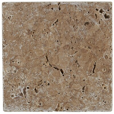 Hopkins 6 x 6 Natural Stone Field Tile in Light Noce