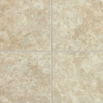 Heathland 6 x 6 Ceramic Field Tile in Beige
