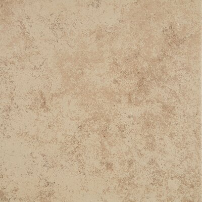 Jacobson 12 x 12 Ceramic Field Tile in Mushroom