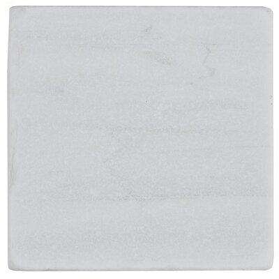 Harrison 4 x 4 Natural Stone Field Tile in Contempo White