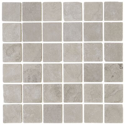 Harrison 2 x 2 Natural Stone Field Tile in Silver Screen