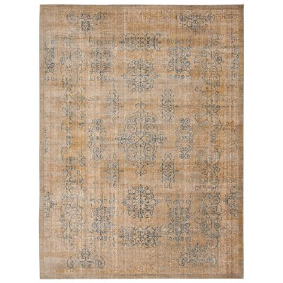 Moroccan Gold Area Rug Rug Size: Rectangle 53 x 75
