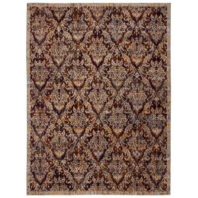 Moroccan Garnet Rug Rug Size: Rectangle 53 x 75