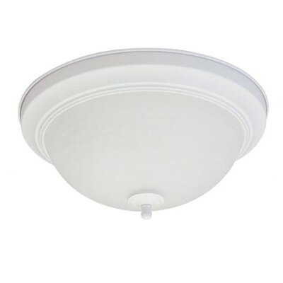 13W 2-Light Energy Star Flush Mount