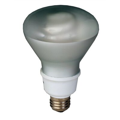 Compact Fluorescent Light Bulb Wattage: 16W