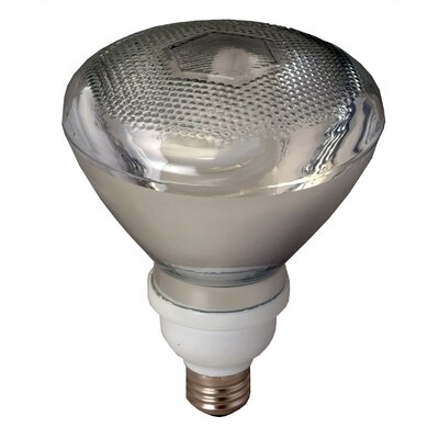 Compact Fluorescent Light Bulb Bulb Temperature: 2700K