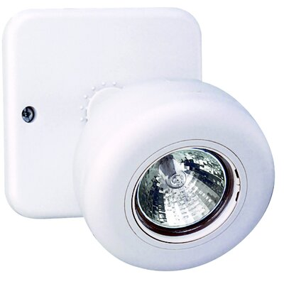 Wet Location Round Remote Head for Emergency Light in White