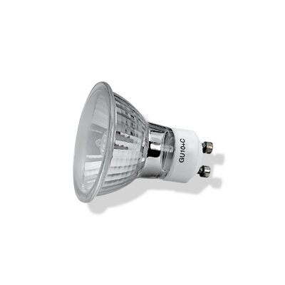 120-Volt Halogen Light Bulb (Set of 3) Wattage: 35W